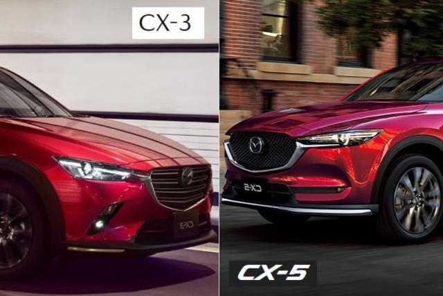 cx3とcx5の比較